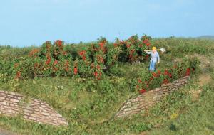 Heki 19125 rozen